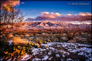 The New Year Brings Big Changes To Photography By Mark Myhaver